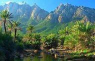 سقطرى إطلانتس اليمن.. الأرخبيل المفقود! (تحقيق)