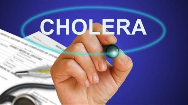 جمعية البيئة والتنمية الإجتماعية بإب تختتم مشروع التوعية بمخاطر الكوليرا
