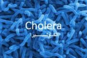 اختتام الحملة البيئية لمكافحة وباء الكوليرا بمديرية المخادر بإب