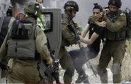 الاحتلال الإسرائيلي يعتقل 11 فلسطينيا بالضفة الغربية المحتلة