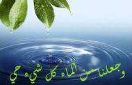 هيئة الموارد المائية بإب تنفذ حملة لردم الآبار المخالفة في منطقة الحوض المائي
