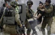 الاحتلال يعتقل 16 فلسطينيا من الضفة الغربية المحتلة