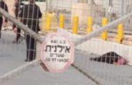 استشهاد مواطنة فلسطينية برصاص الاحتلال على حاجز قلنديا