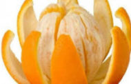 دراسة تكشف فوائد عديدة لقشر البرتقال وخاصة للقلب