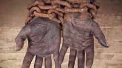 العالم يحتفل باليوم العالمي للقضاء علي التمييز العنصري
