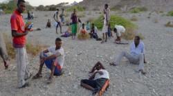 ما وراء ترحيل النظام السعودي لآلاف المهاجرين الأفارقة للجوف؟
