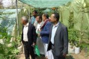 وكيل محافظة إب يتفقد المشتل الزراعي التابع لمكتب الزراعة